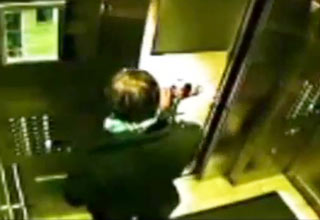 dog [Video] Dog Vs Elevator Funny Picture