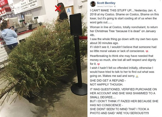 Woman Returns Costco Christmas Tree (In January) And Gets