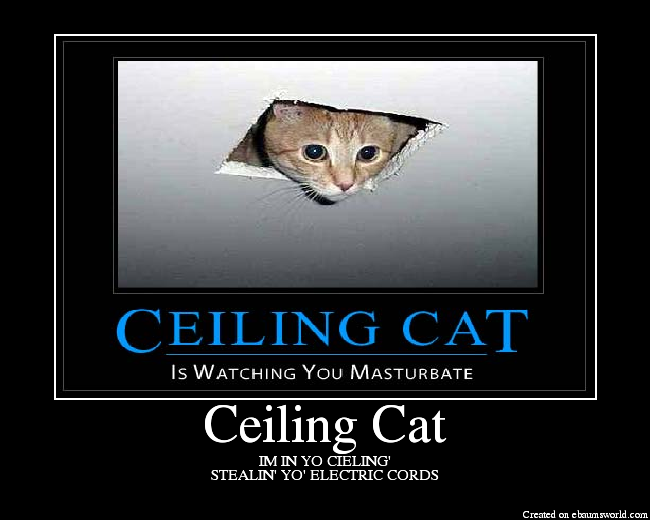 Pretty Pictures Gallore! - Page 2 CeilingCat