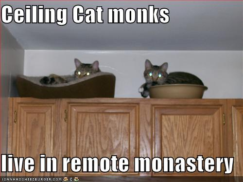 funny-pictures-ceiling-cat-monks-cupboar