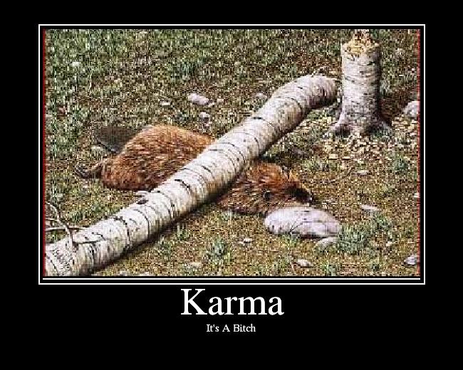 http://media.ebaumsworld.com/picture/SGT4EVA/Karma.png