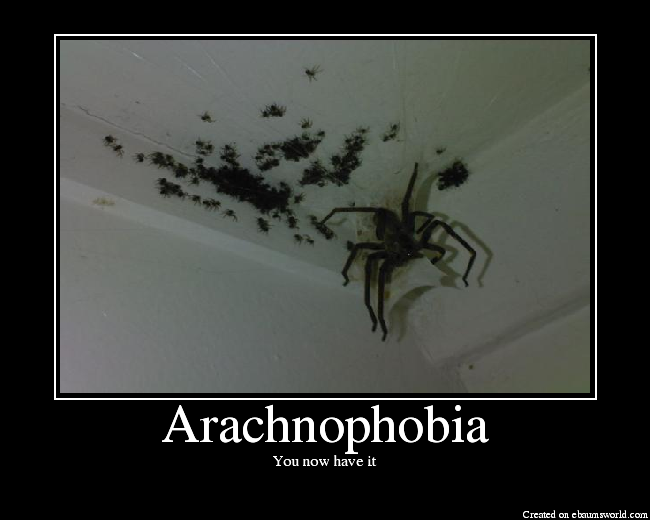 http://media.ebaumsworld.com/picture/cleptic_monkey/Arachnophobia.png