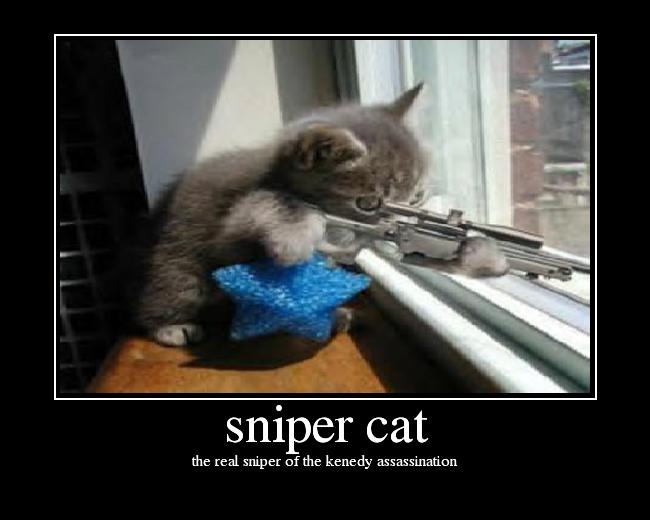 Min bild slår din bild - Sida 7 Snipercat