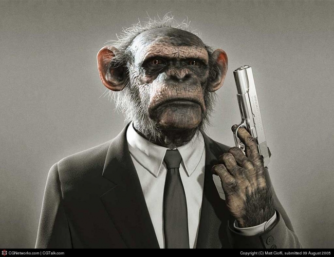 funny pictures of animals with guns