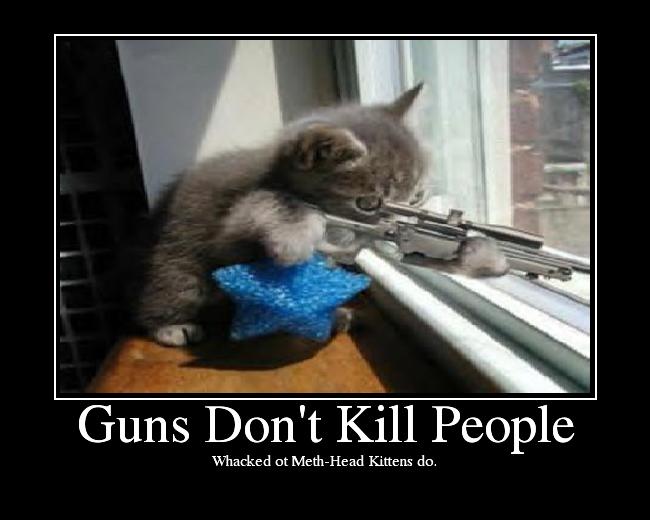 http://media.ebaumsworld.com/picture/illuvatar74/GunsDontKillPeople.png