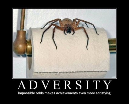 adversity01.jpg