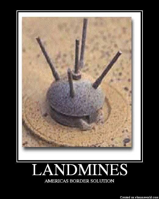 http://media.ebaumsworld.com/picture/mr_sajones/LANDMINES.png