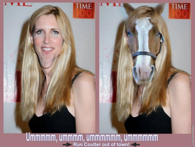 http://media.ebaumsworld.com/picture/phototoday/HORSE_FACE_COULTER.jpg