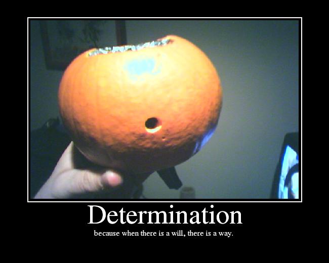 determination essay