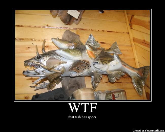Imágenes WTF! (risas)
